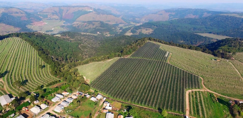Conheça a cidade de São Joaquim em Santa Catarina